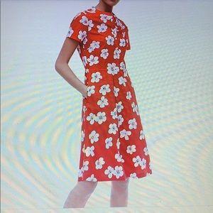J crew factory button down shirt dress sz 12